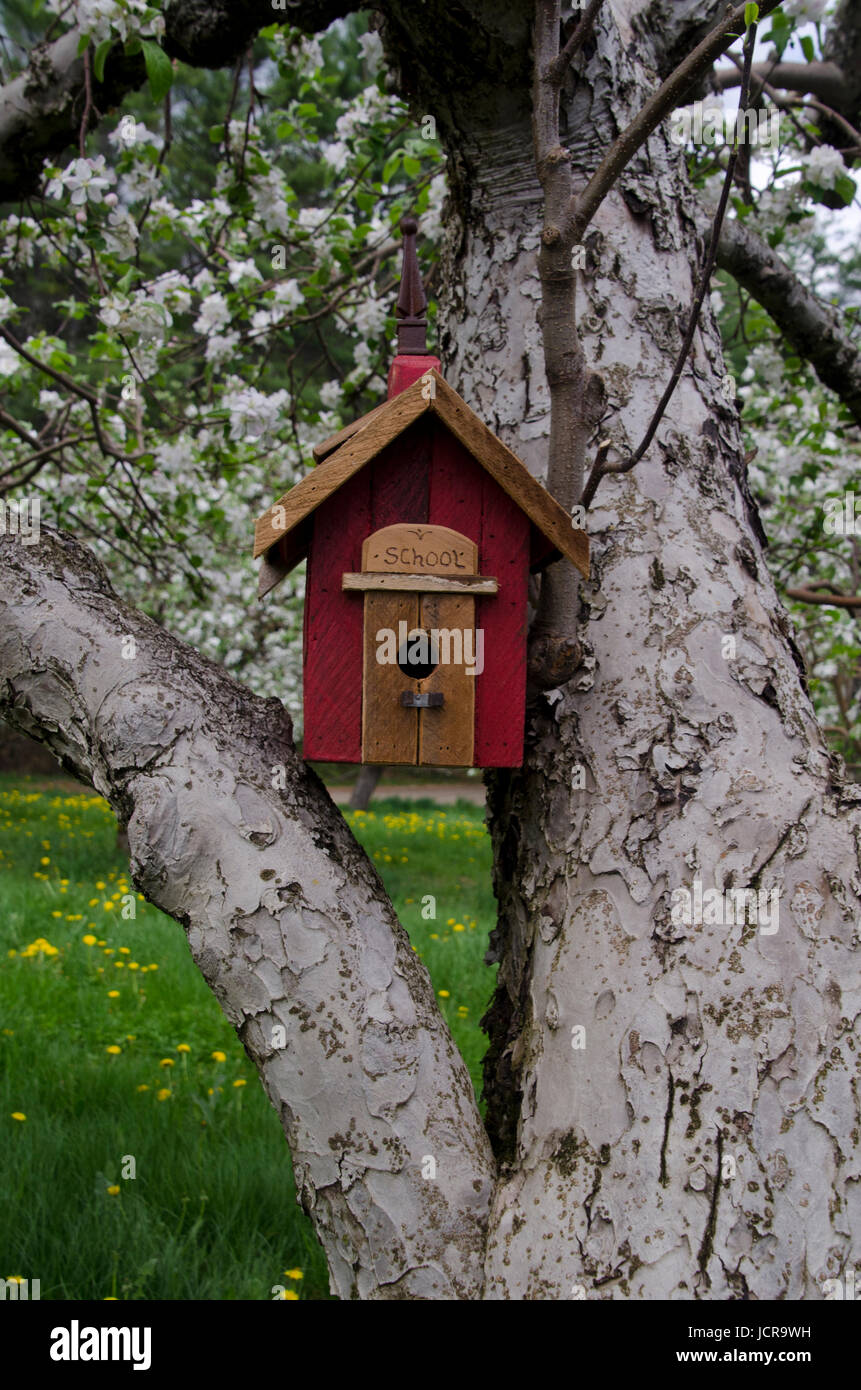Red birdhouse in blooming orchard, Yarmouth, Maine. - Stock Image