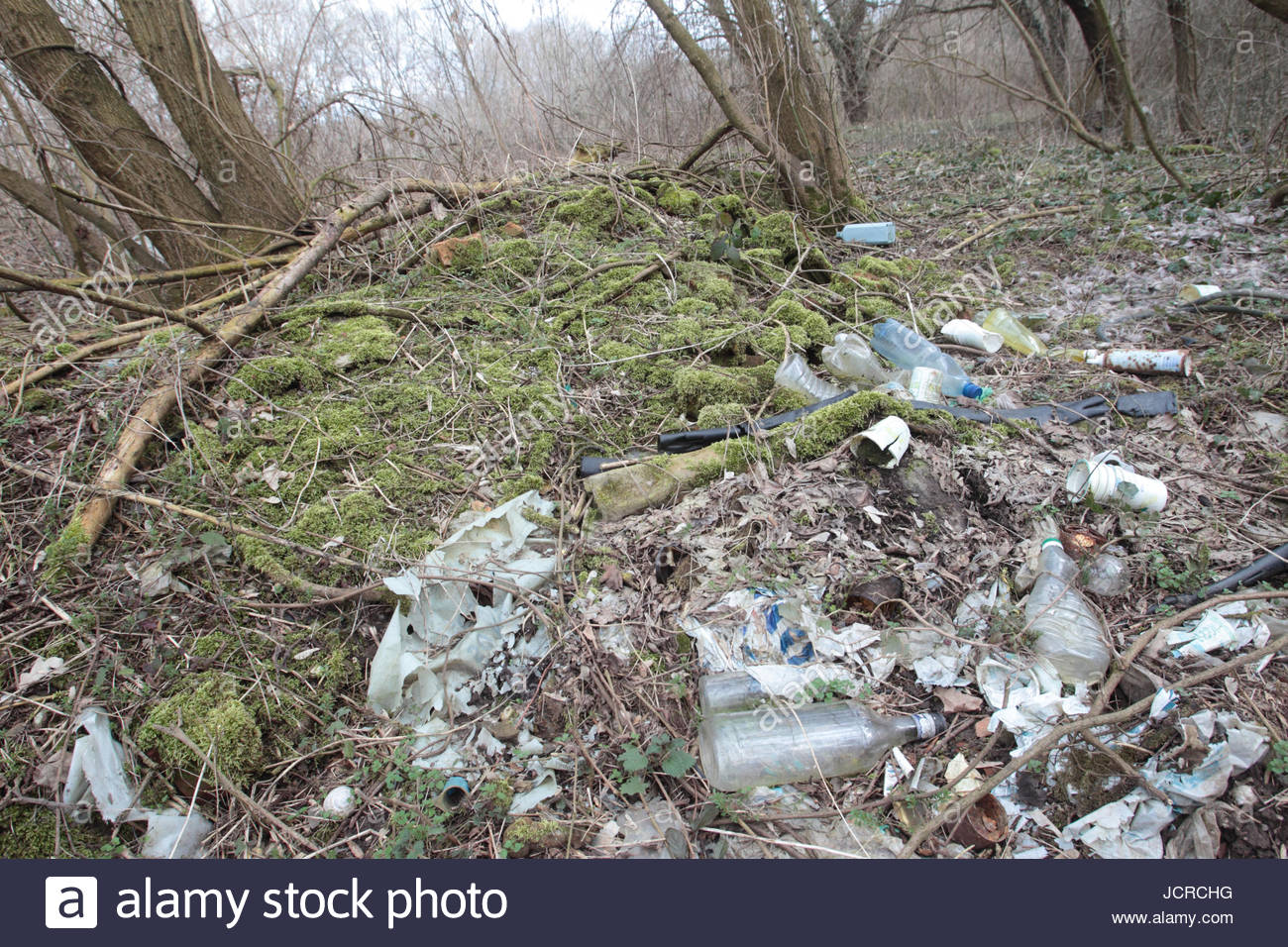 This picture illustrates how nature takes back its space by covering an illegal dump left by people in a forest. - Stock Image