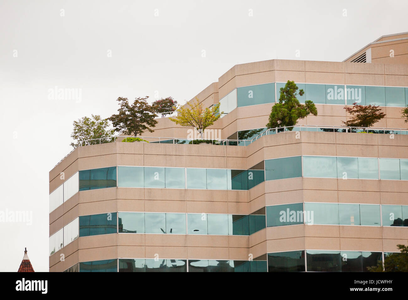 Trees growing on rooftop of office building - Washington, DC USA Stock Photo