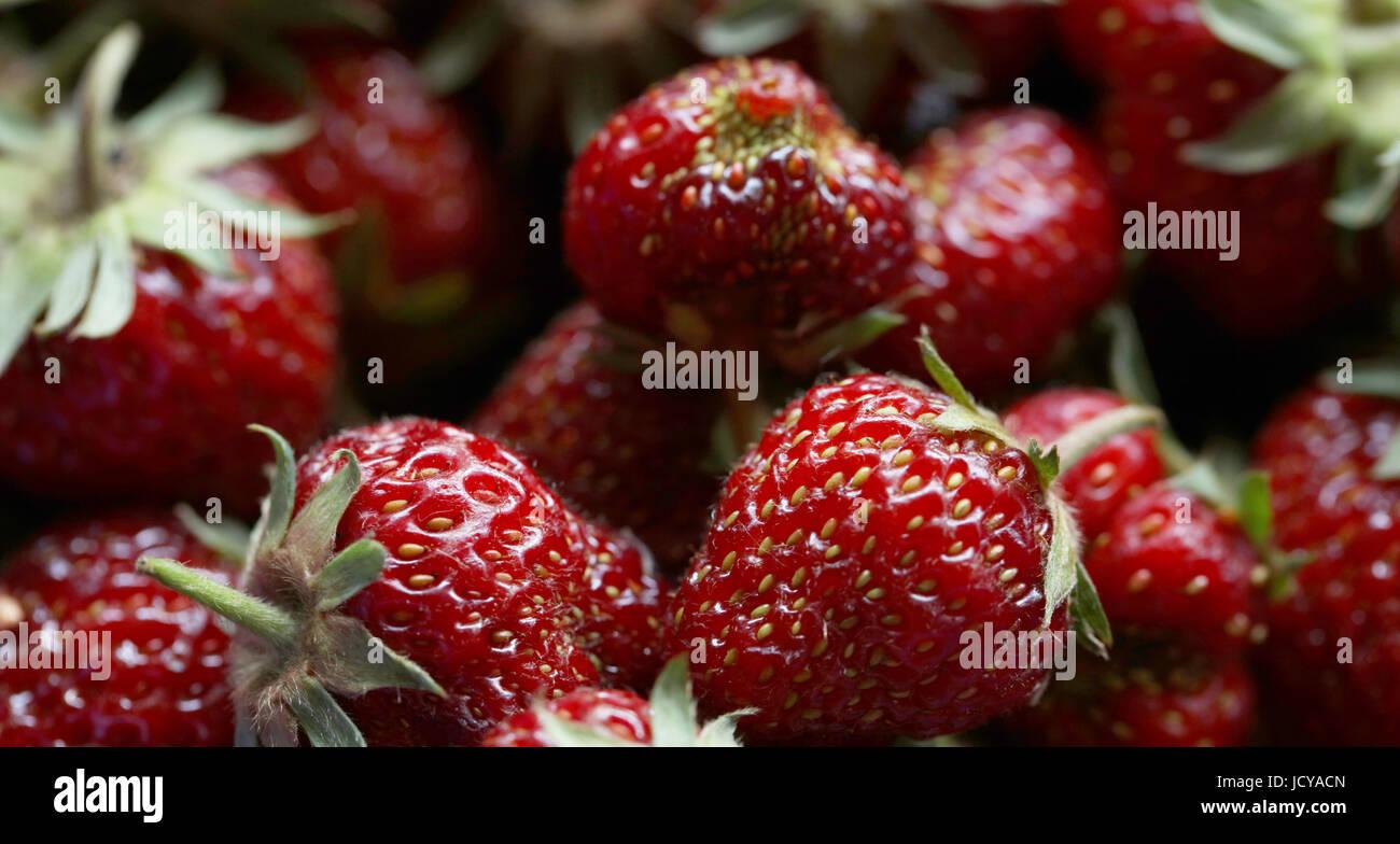Erdbeeren Stock Photo