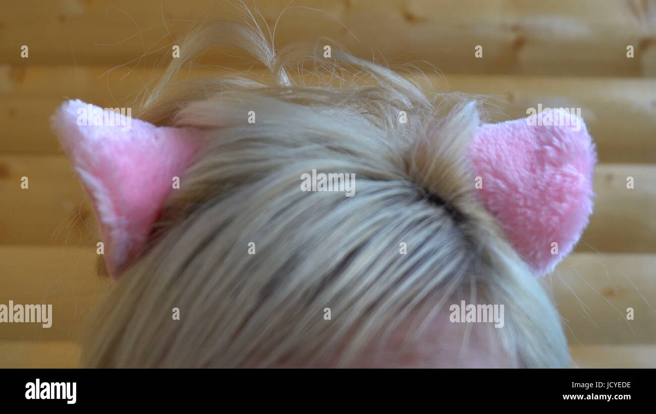 pink cat ears on the head of the girl. Stock Photo