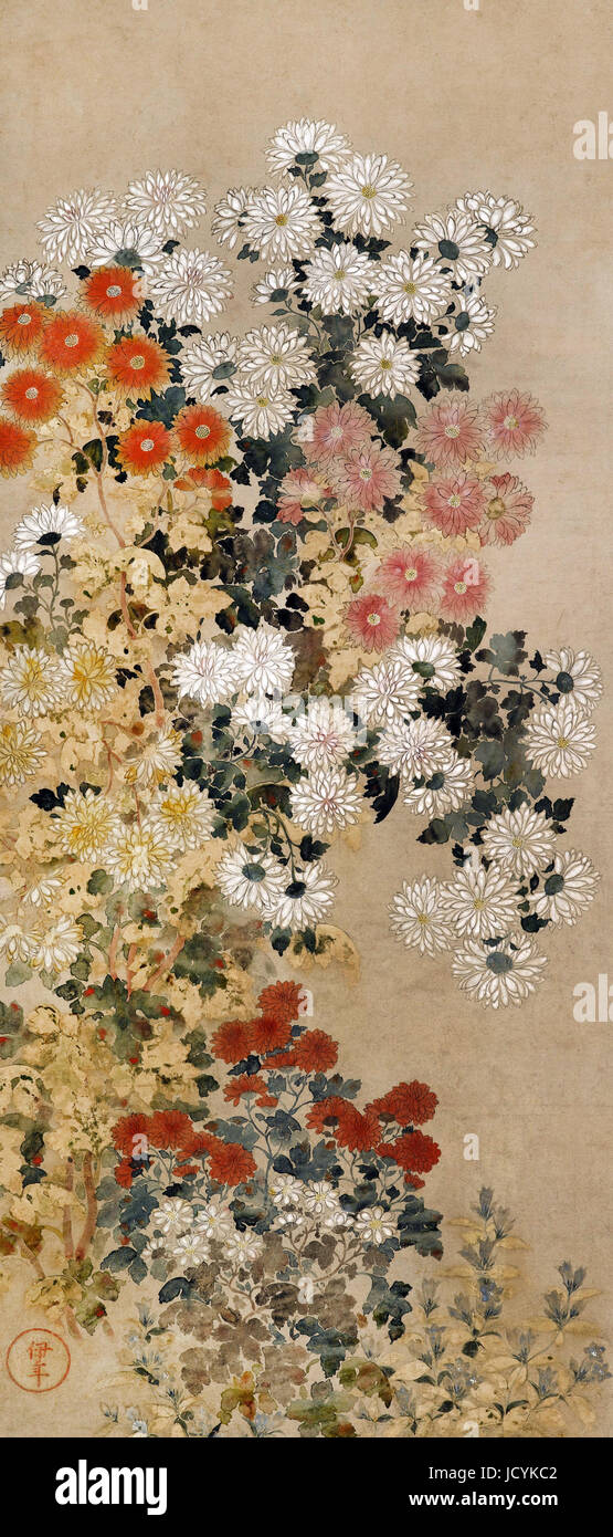 Master of I-nen Seal, Chrysanthemums 1600-1630 Color on paper. Freer Gallery of Art, Washington, D.C., USA. - Stock Image