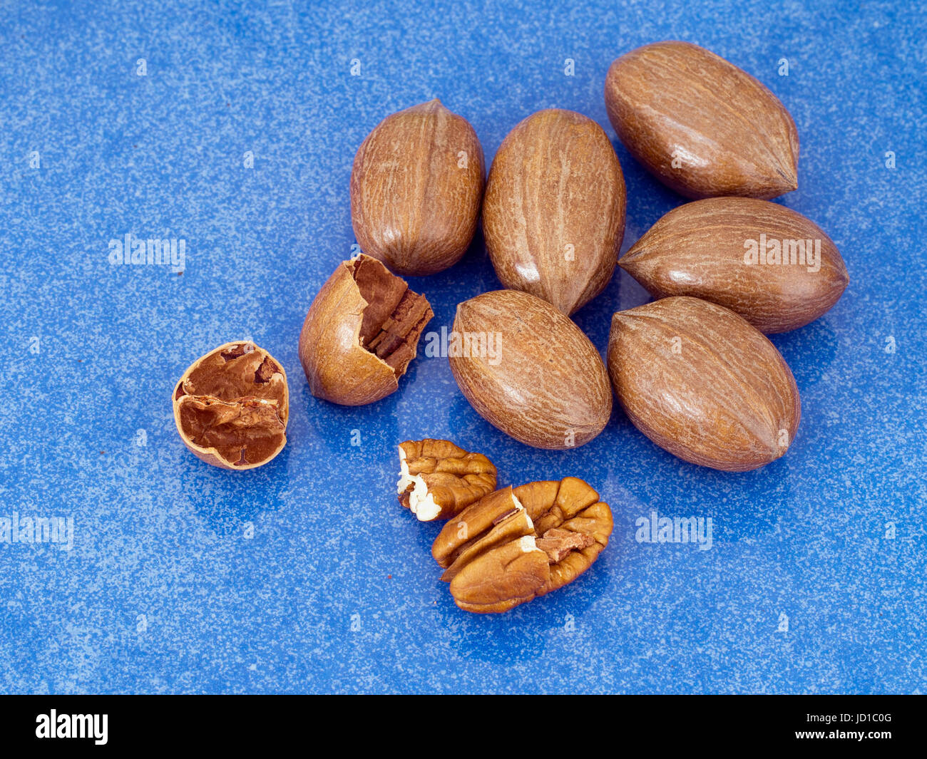 Pecan nuts on shiny blue background. Healthy snack, rich in vitamins, minerals. - Stock Image