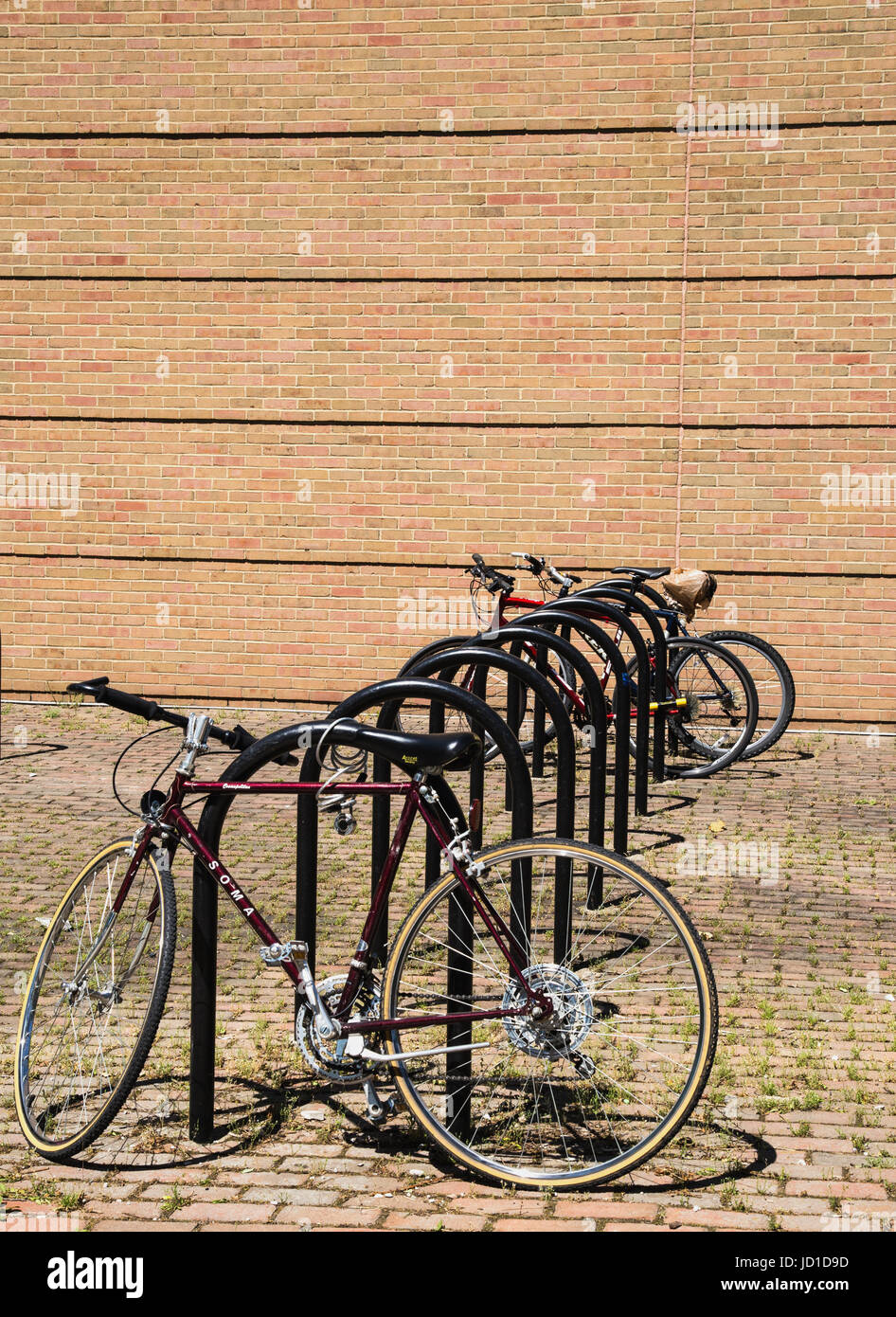 bikes parked at University of Michigan, Ann Arbor - Stock Image