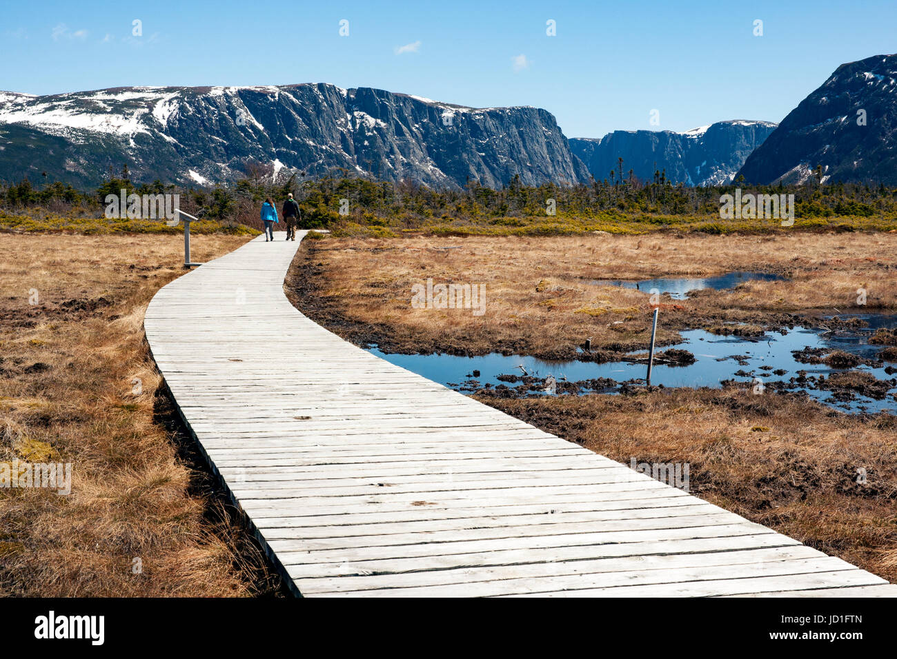 Trail to Western Brook Pond, Gros Morne National Park, Newfoundland, Canada - Stock Image