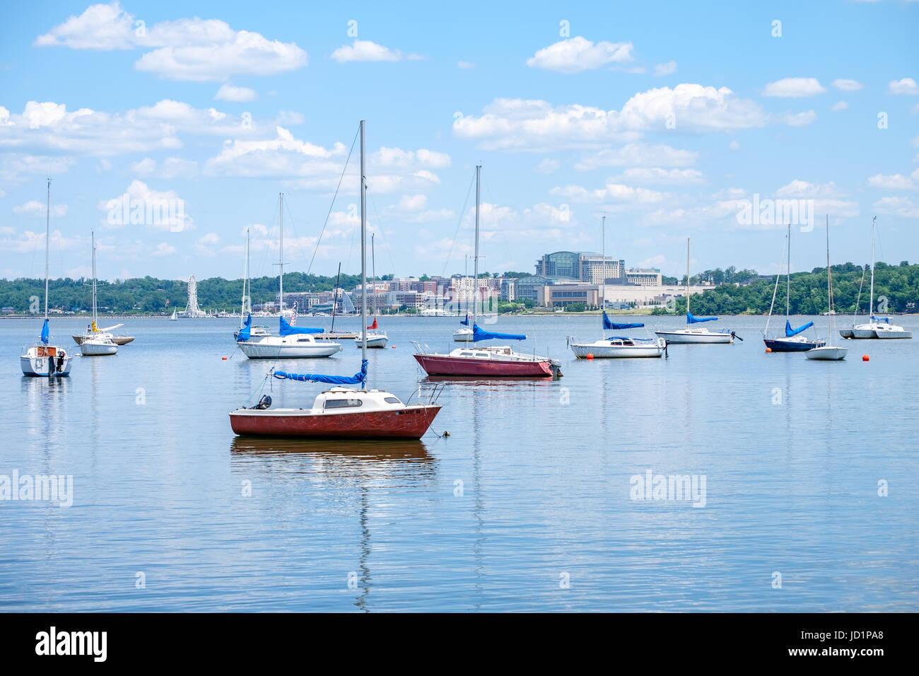 Sailboats anchored in the Potomac River - Stock Image