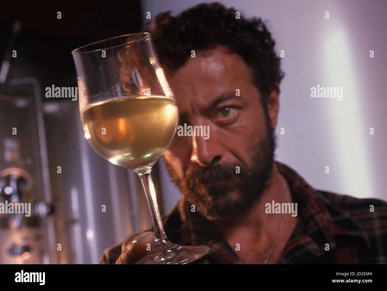French Cellar worker examines a freshly drawn glass of Chardonnay dry white wine drawn from fermentation tanks in the modern u0027Le Closu0027 cellars facility of ...  sc 1 st  Alamy & French Cellar worker examines a freshly drawn glass of Chardonnay ...