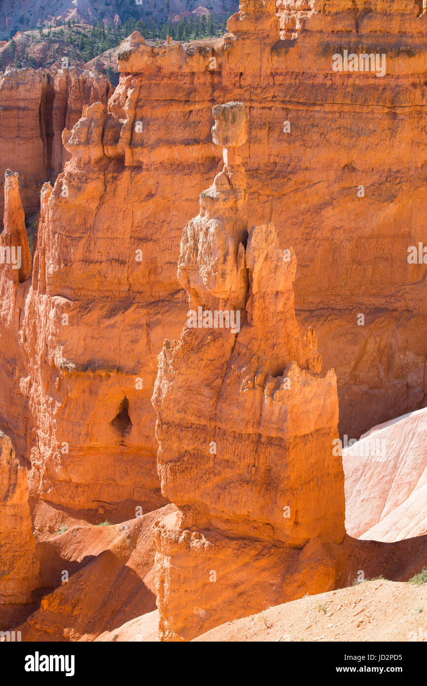 From the Queens Garden Trail, Bryce Canyon National Park, Utah, USA - Stock Image