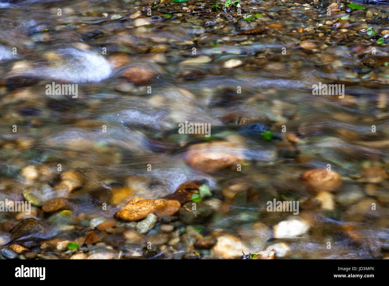 Water flows over the rocks and pebbles of Home Creek as it flows through Fern Canyon in Northern California's - Stock Image
