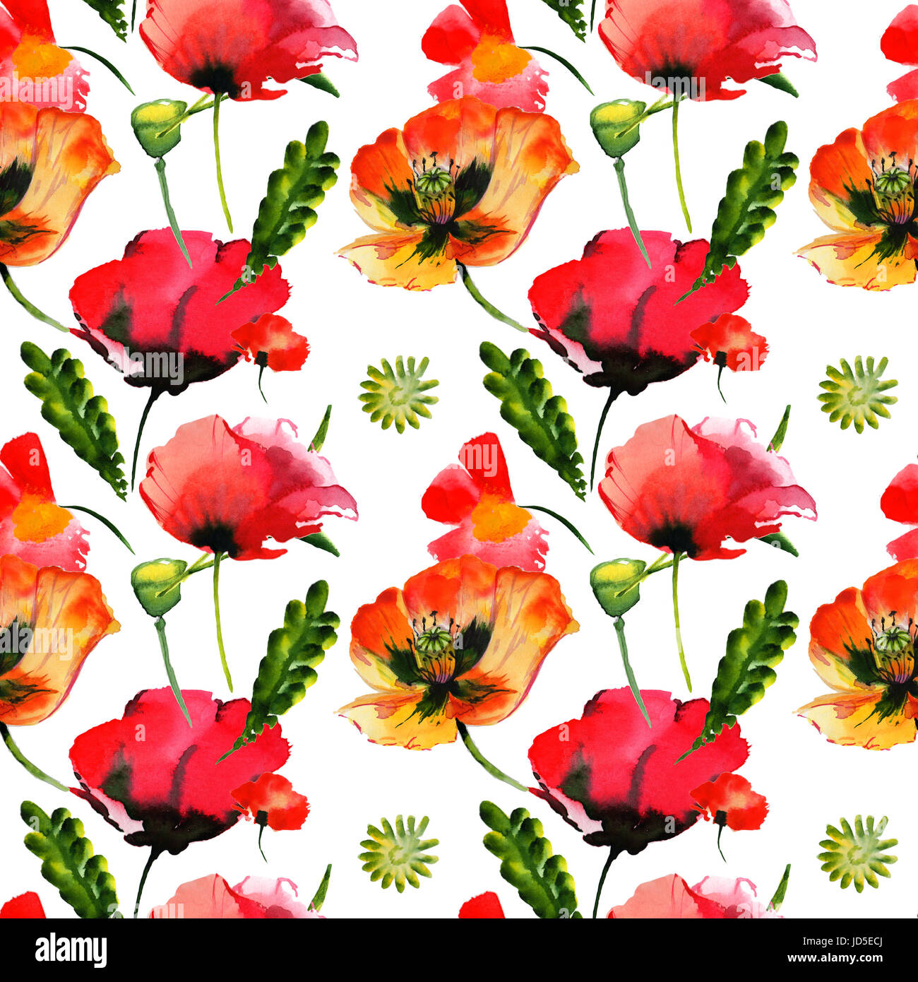 Wildflower Poppy Flower Pattern In A Watercolor Style Isolated Full