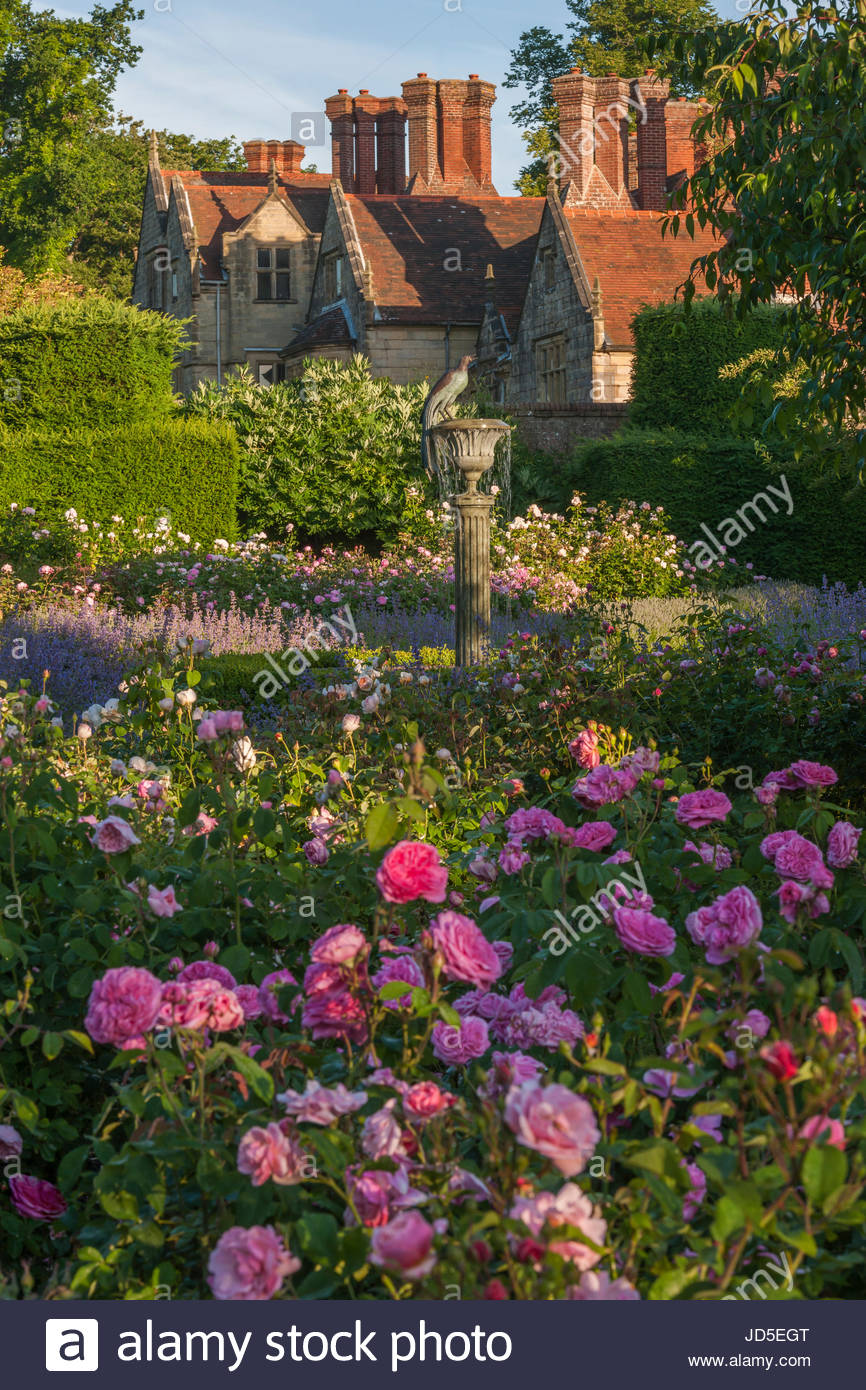 formal rose garden at Borde Hill - Stock Image