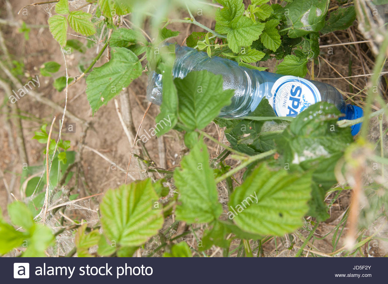Ijmuiden The Netherlands Plastic bottle of Spa Reine water thrown away in the dunes. Spa reine (clean) is produced - Stock Image