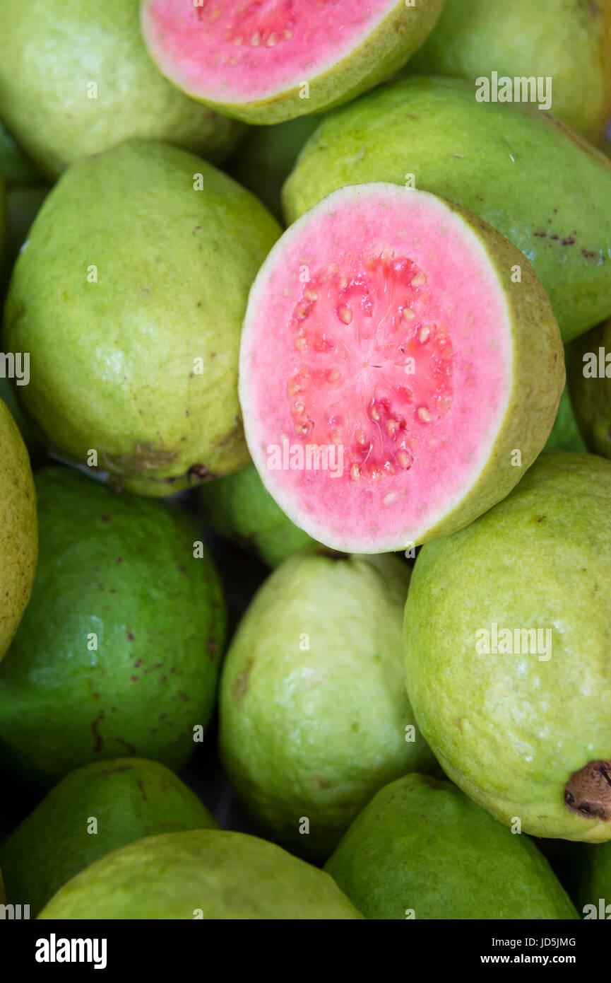 Ripe Guava Fruit Stock Photos & Ripe Guava Fruit Stock