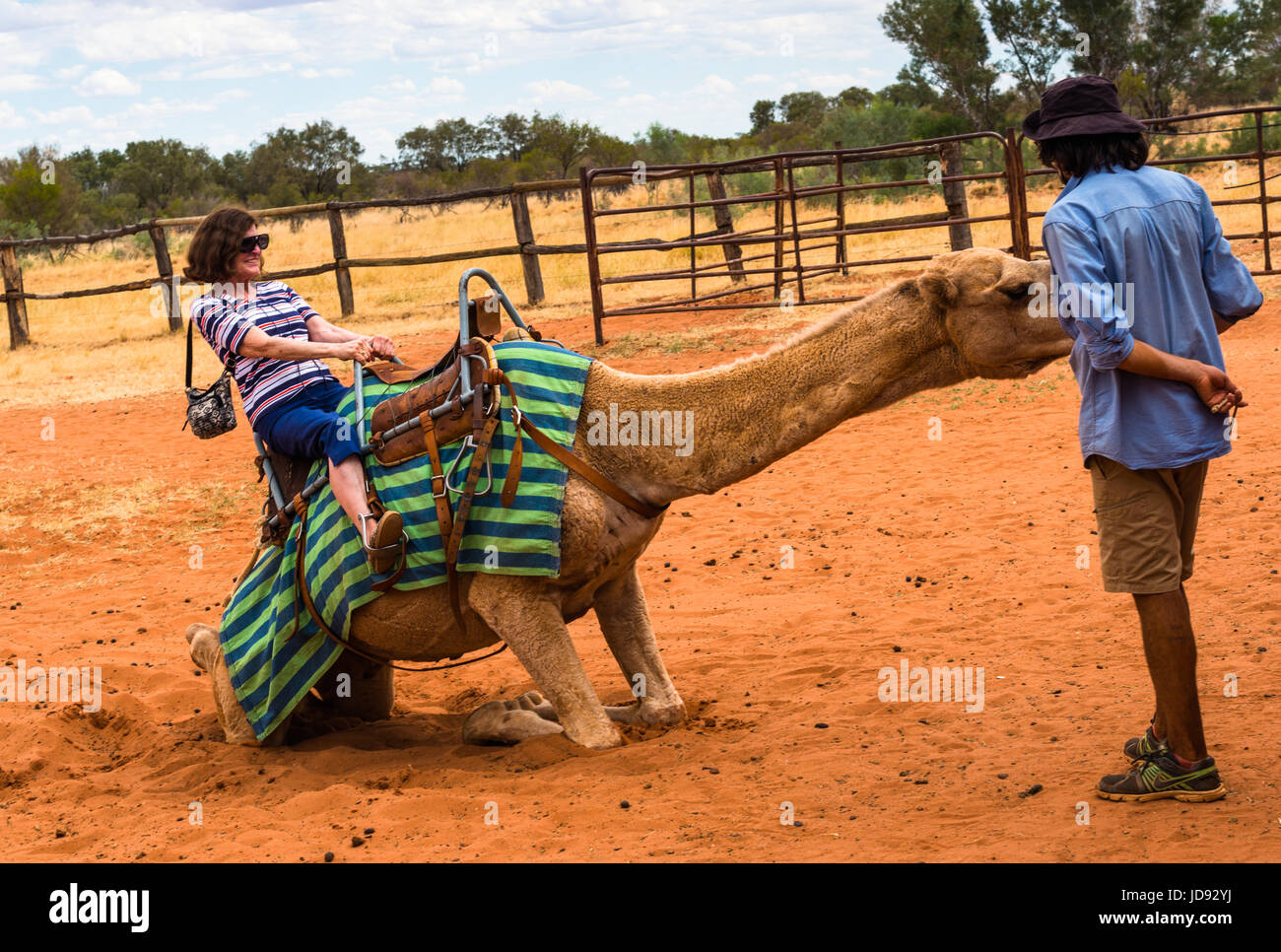 Tourists ride the camels at Outback camel farm. Northern Territory, Australia. - Stock Image