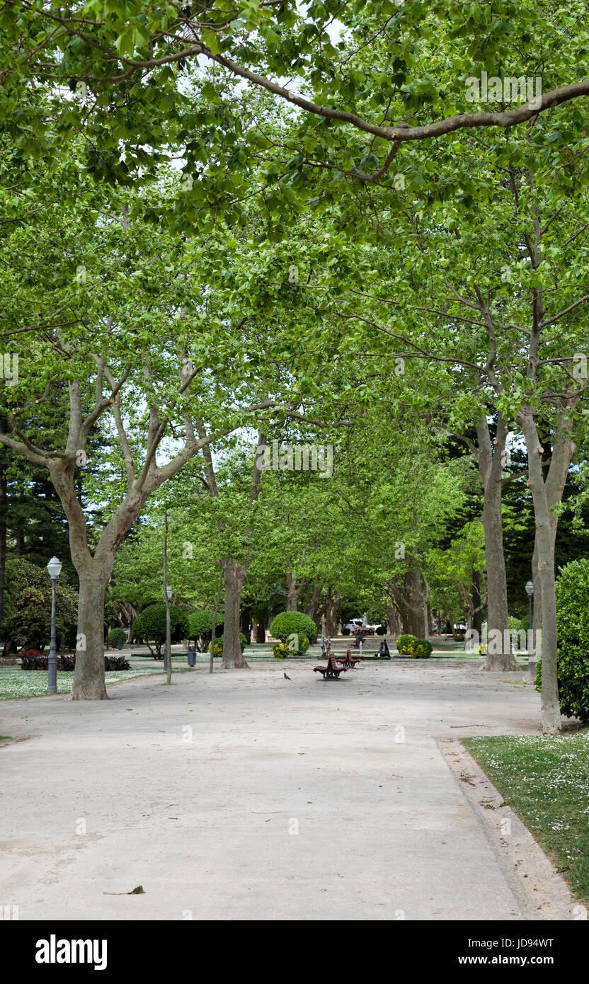 Jardim Do Passeio Alegre in Porto - Portugal - Stock Image