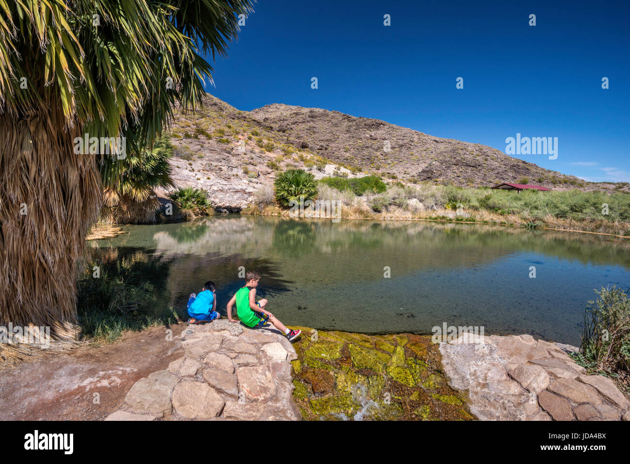 Young boys at pond at Rogers Spring, geothermal hot spring oasis near Northshore Road, Lake Mead National Recreation Stock Photo