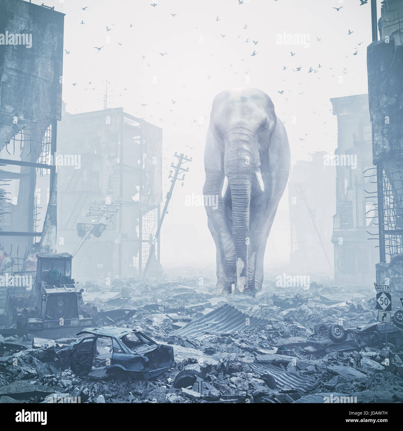 giant elephant in destroyed city. creative concept. Media mixed. Noise added - Stock Image