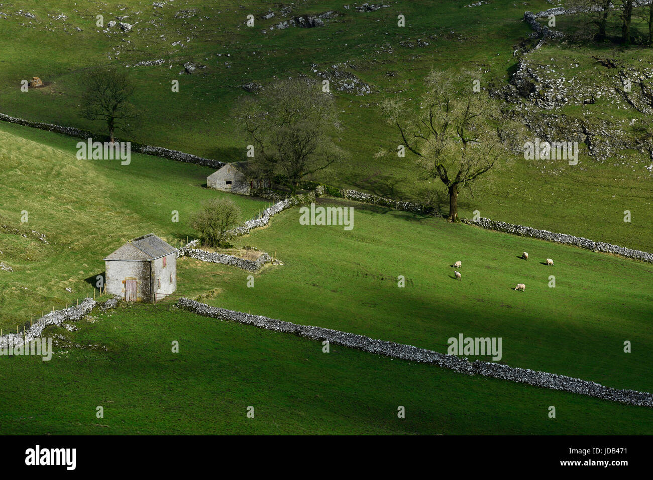 Old Barns in Dowel Dale - Stock Image