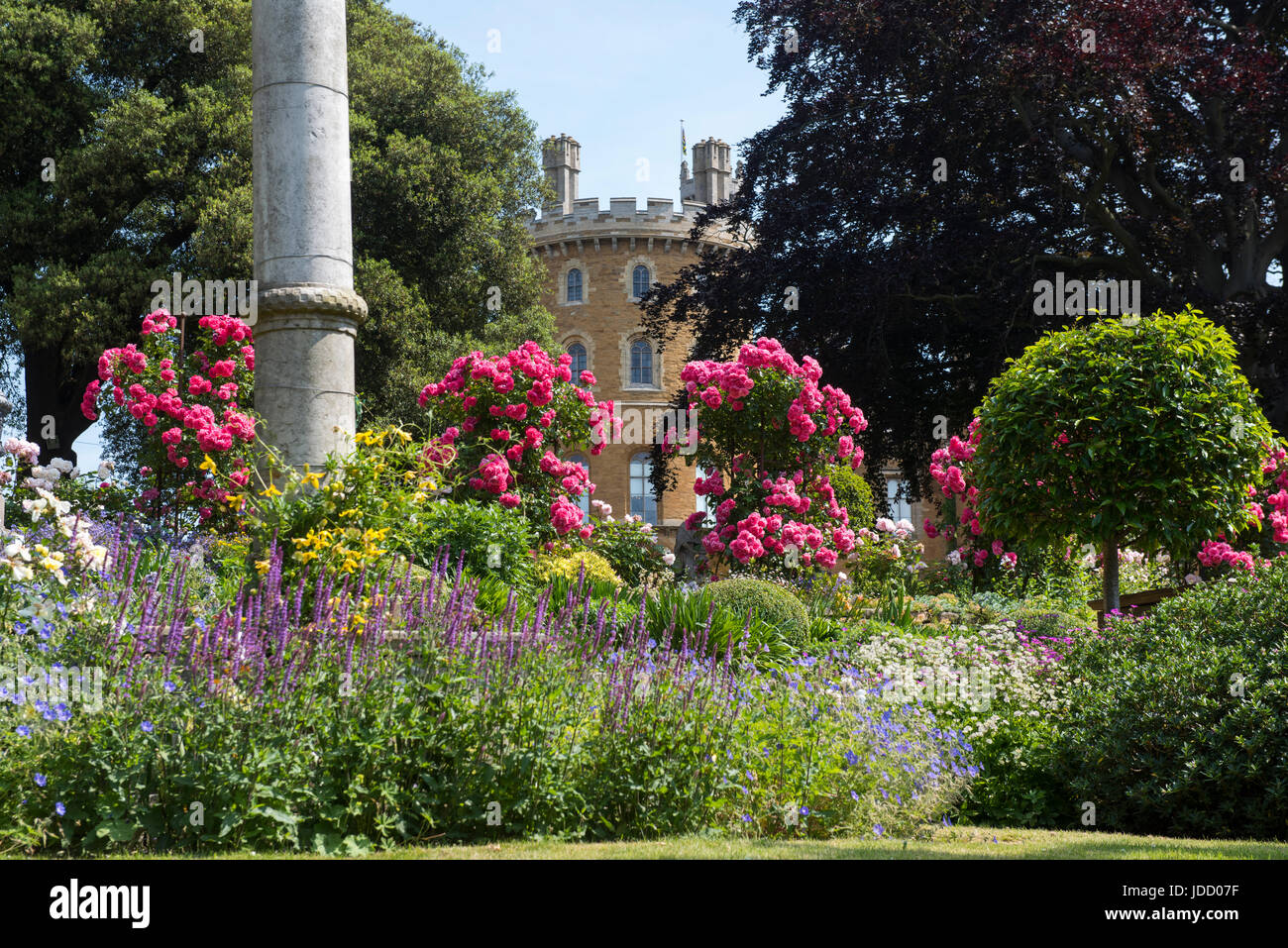 A View Of Belvoir Castle Through The Pretty Flowers In The Rose