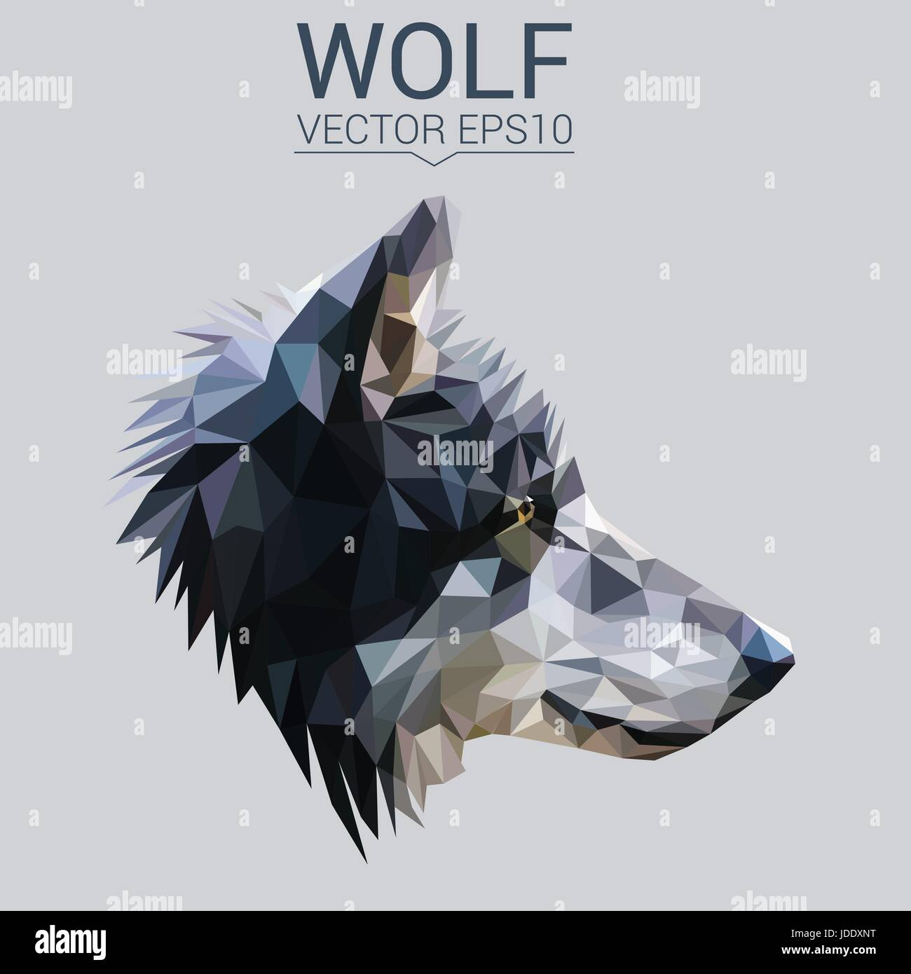Wolf low poly design. - Stock Vector