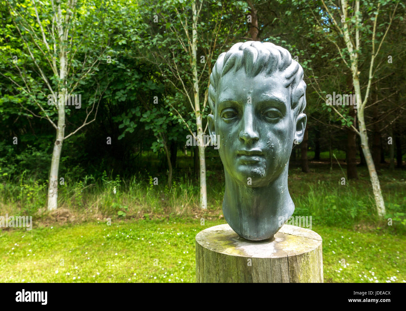 Sculpture of boy or young man head on wood stand in circle of birch trees, called Holloway at Broadwoodside, East - Stock Image