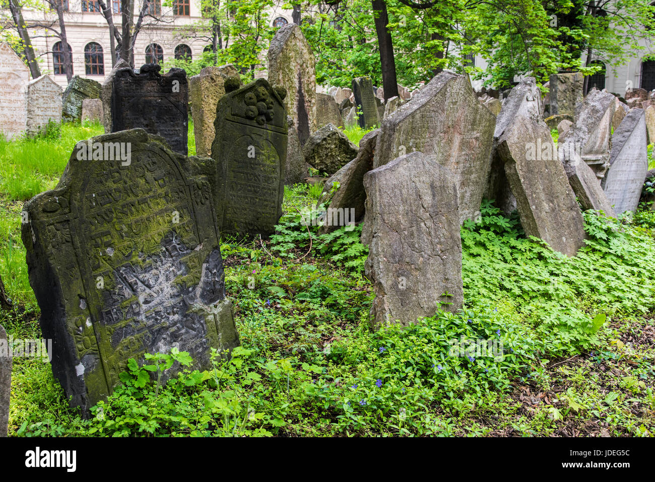 Gravestones in the Old Jewish Cemetery, Prague, Bohemia, Czech Republic Stock Photo