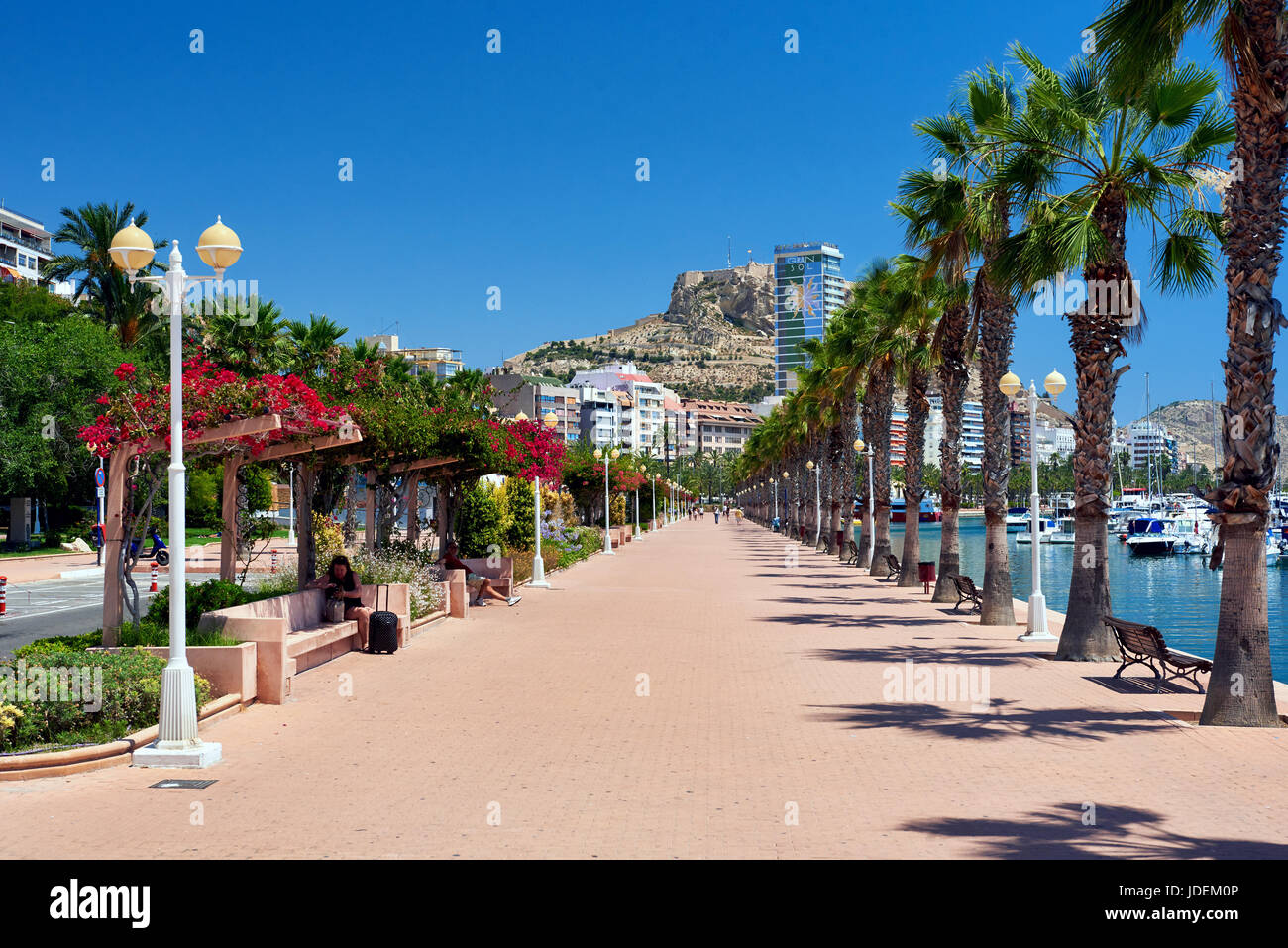 Alicante, Spain-June 20, 2017: Palm-lined seafront promenade in sunny summer day. It is one of the most lovely promenades - Stock Image