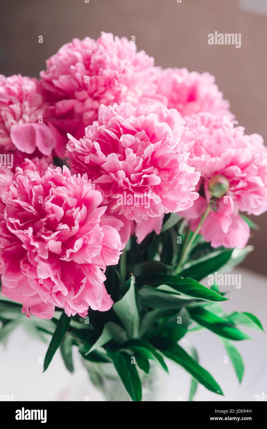 Pastel Floral Wallpaper Background From Flower Petals Stock Photo