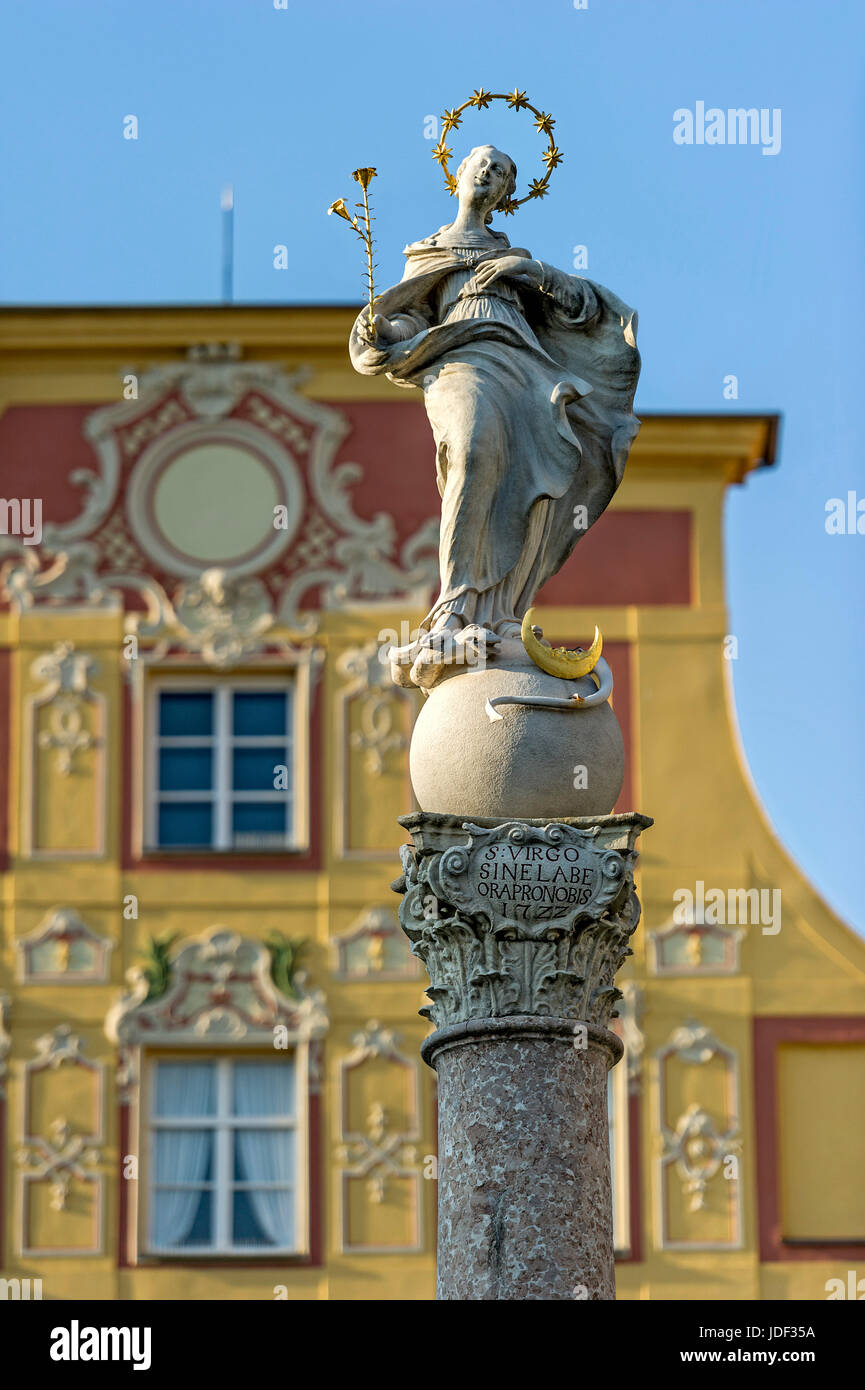 Marian column of the Marien fountain, aristocratic town house Thurn- and Taxishaus, Karls square, Neuburg on the - Stock Image