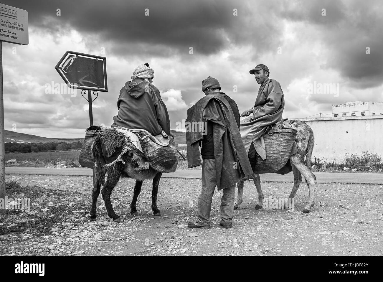 Three men in Moroccan country riding donkeys - Stock Image