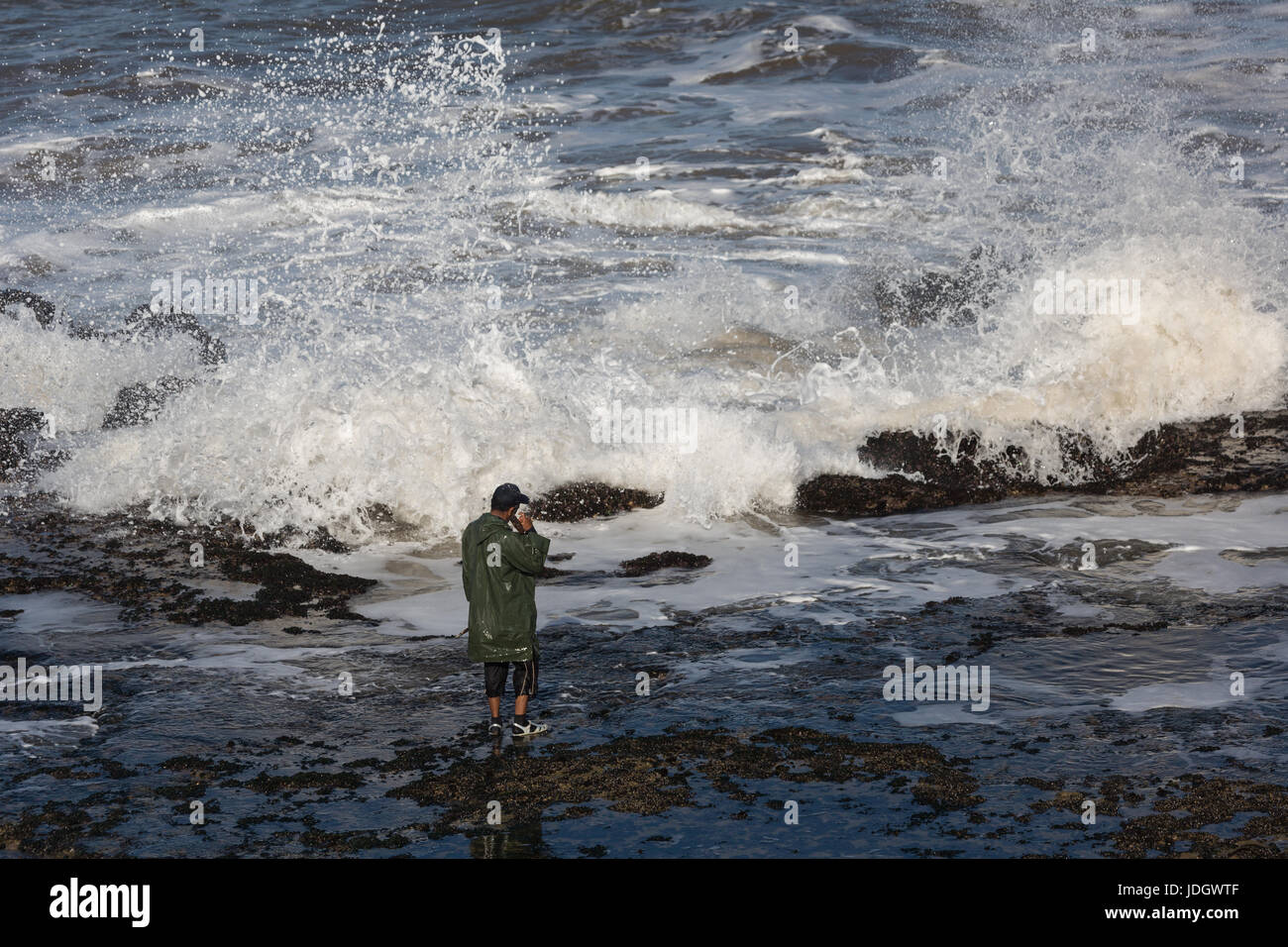 A man waits for a gap between the large Altantic waves breaking on the shoreline to gather shellfish Stock Photo