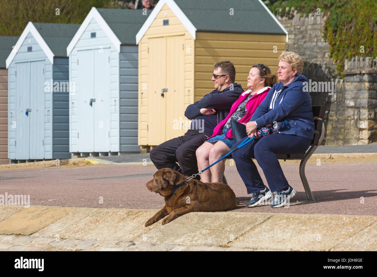 Three people sitting on bench enjoying the sunshine with dog at their feet at Bournemouth, Dorset in April - Stock Image