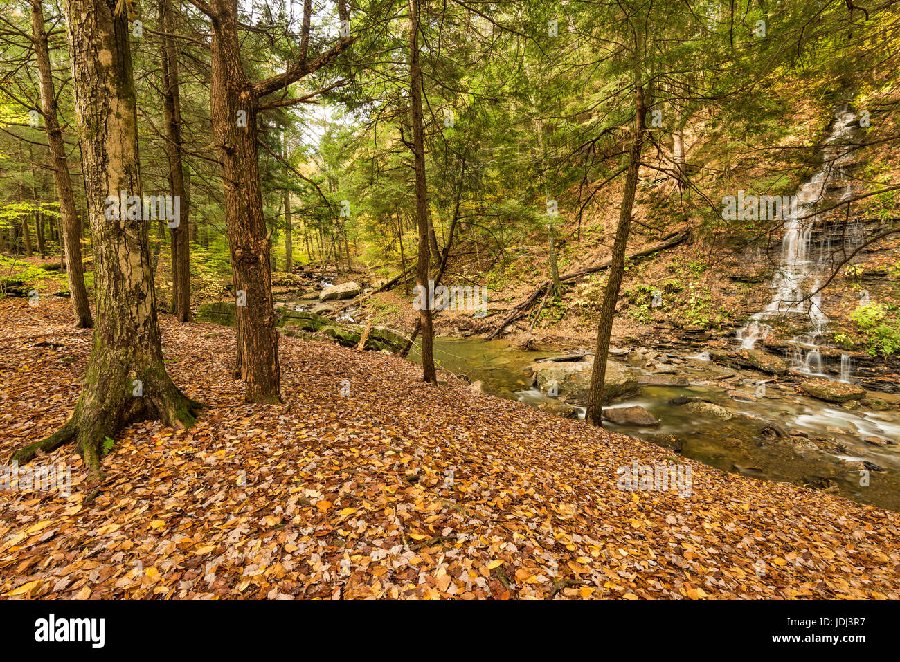 Bridal Veil Falls flows into Stoddard Creek in autumn, Allegany State Park,  Cattaraugus Co., New York - Stock Image