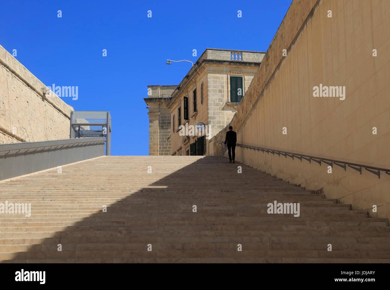 Henzo Steps