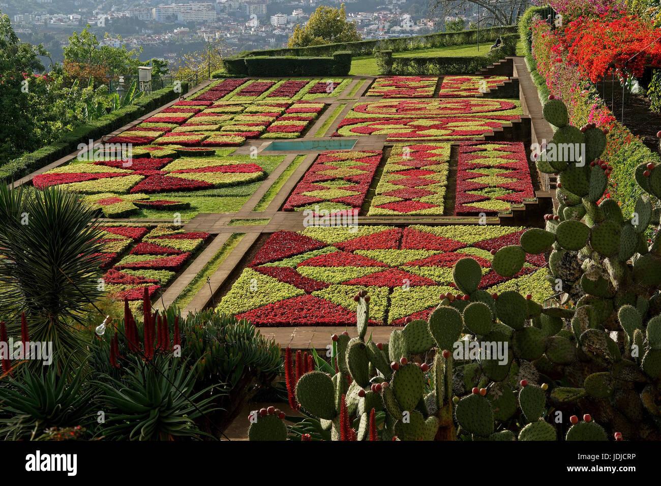 Portugal Madeira Funchal Botanischer Garten Insel Stock Photos