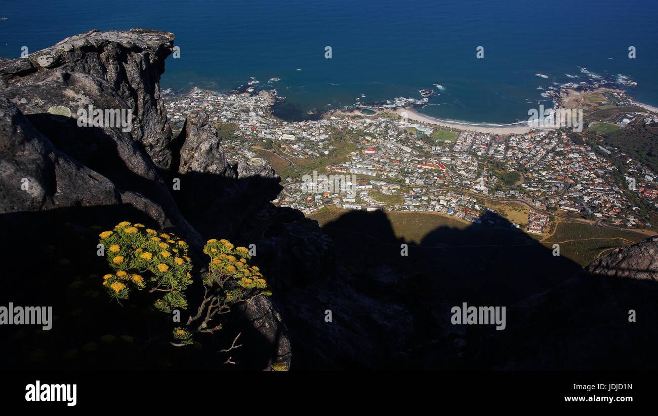 South Africa, Capetown, look of the mesa,                              , Suedafrika, Kapstadt, Blick vom Tafelberg - Stock Image