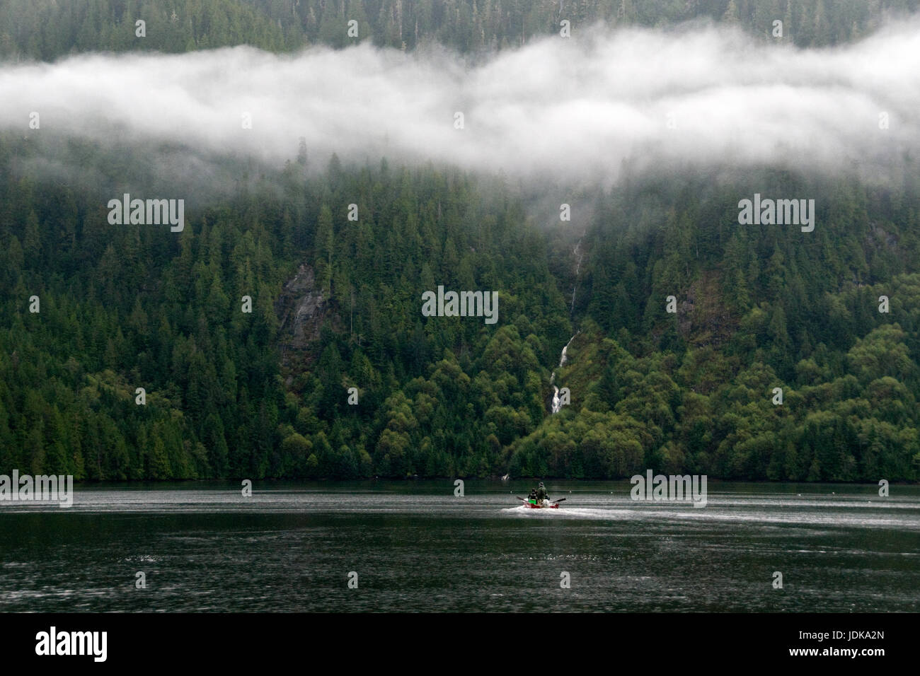 Tourists in a motorboat taking part in a bear viewing ecotour in the Great Bear Rainforest, British Columbia, Canada. - Stock Image