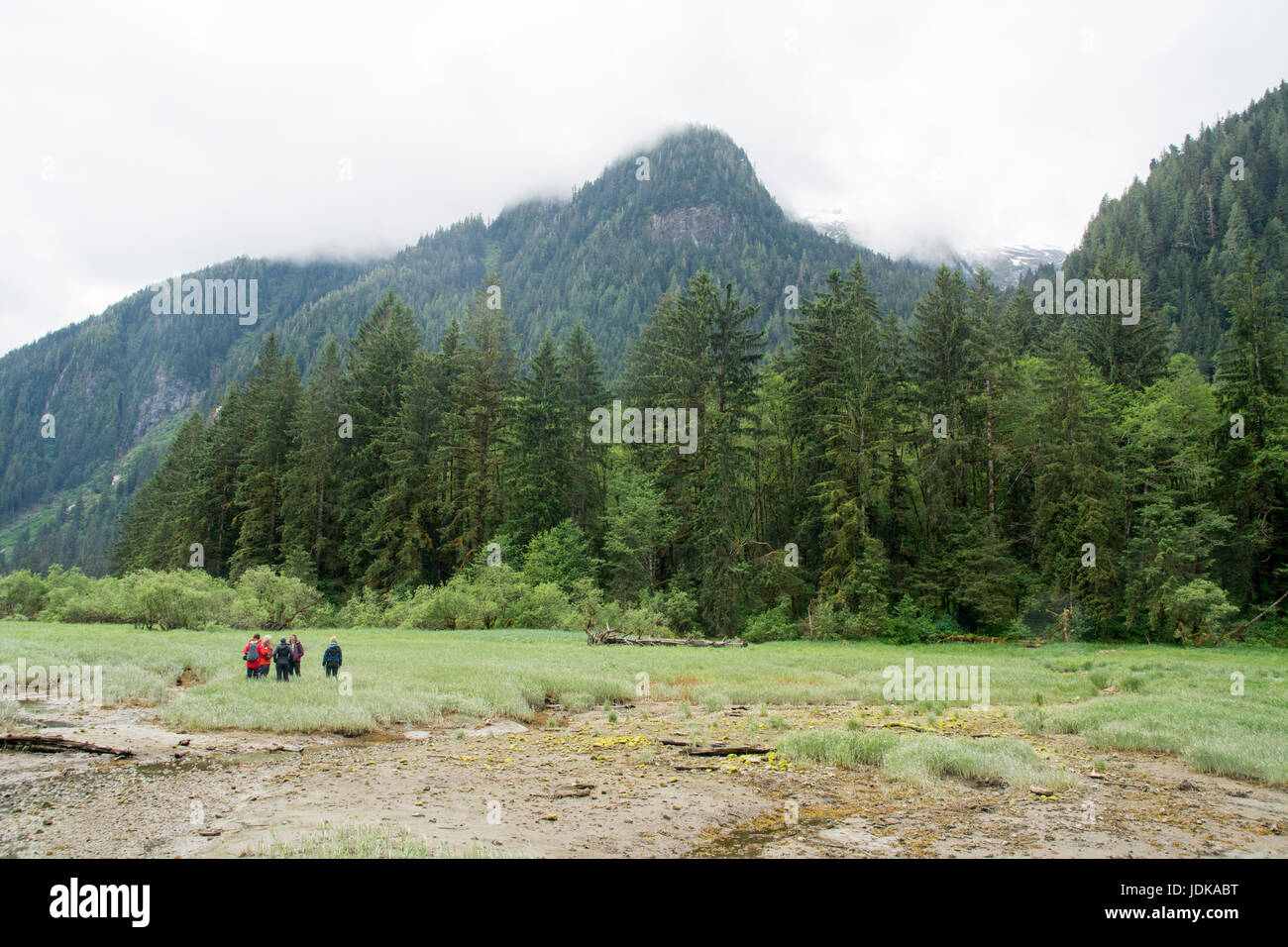 A nature eco-tour in a coastal estuary of the Great Bear Rainforest, British Columbia, Canada. - Stock Image