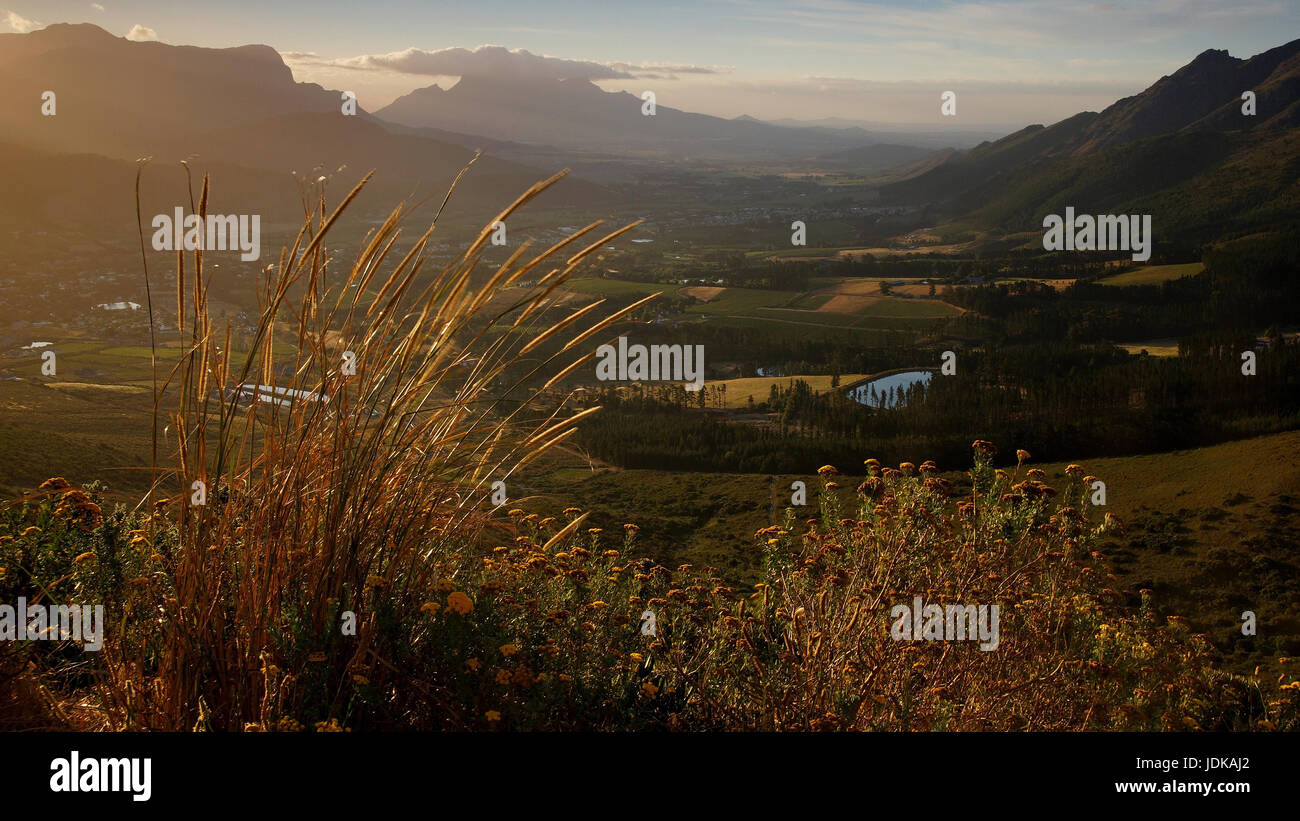 Africa, South Africa, Franschhoek,                               , Afrika, Suedafrika - Stock Image