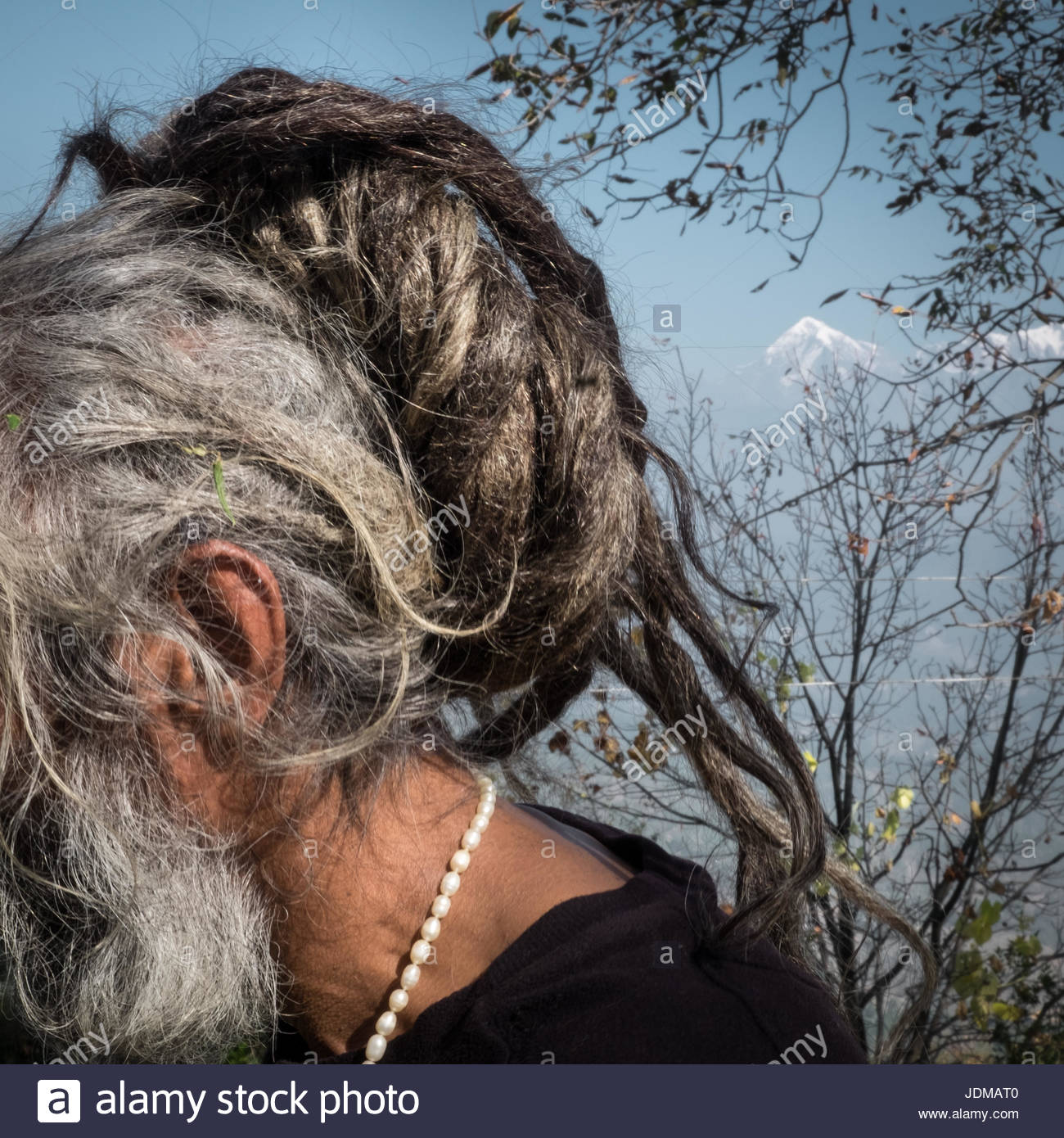 The dreadlocks of a Sadhu in the Himalayas. - Stock Image