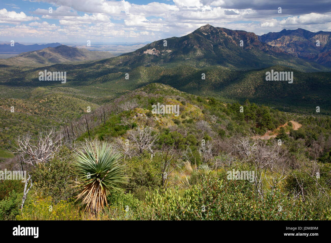 The Chiricahua mountains in southeastern Arizona. - Stock Image