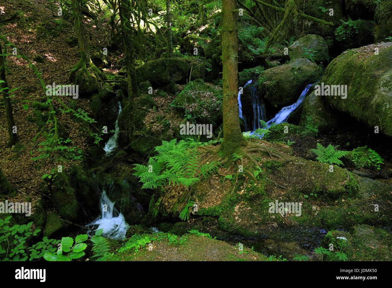 Gertelbach waterfalls, Black Forest, Germany - Stock Image
