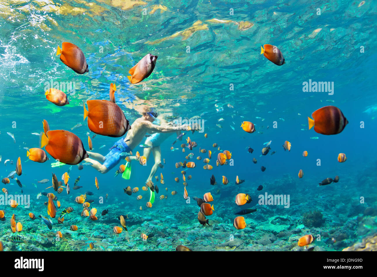 Happy family - couple in snorkeling masks dive deep underwater with tropical fishes in coral reef sea pool. Travel Stock Photo