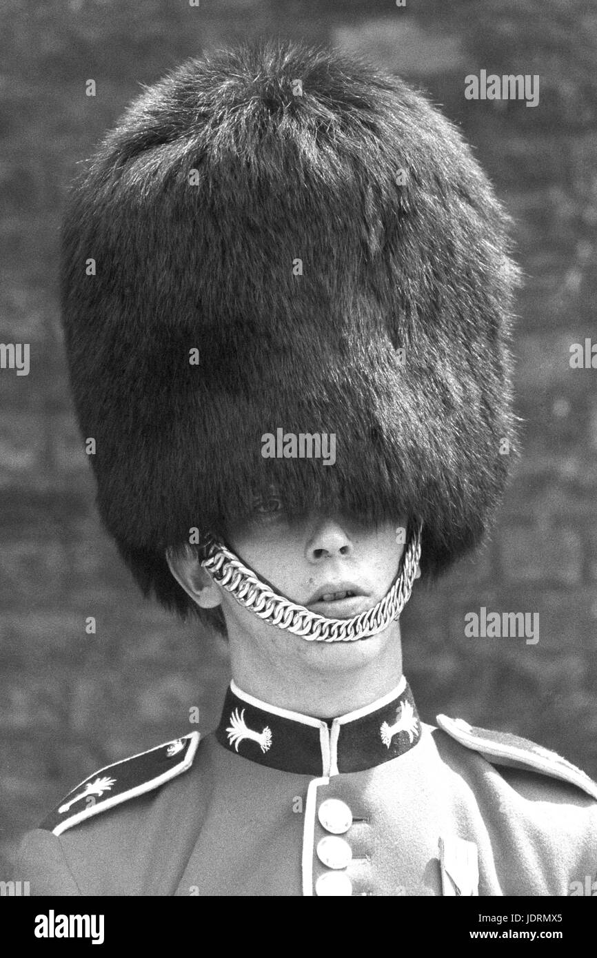 A Welsh guardsman on duty outside St James's Palace in London. The temperatures again soared into the eighties - Stock Image