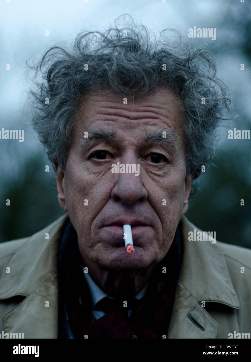 FINAL PORTRAIT (2017)  GEOFFREY RUSH  STANLEY TUCCI (DIR)  OLIVE PRODUCTIONS/MOVIESTORE COLLECTION LTD - Stock Image