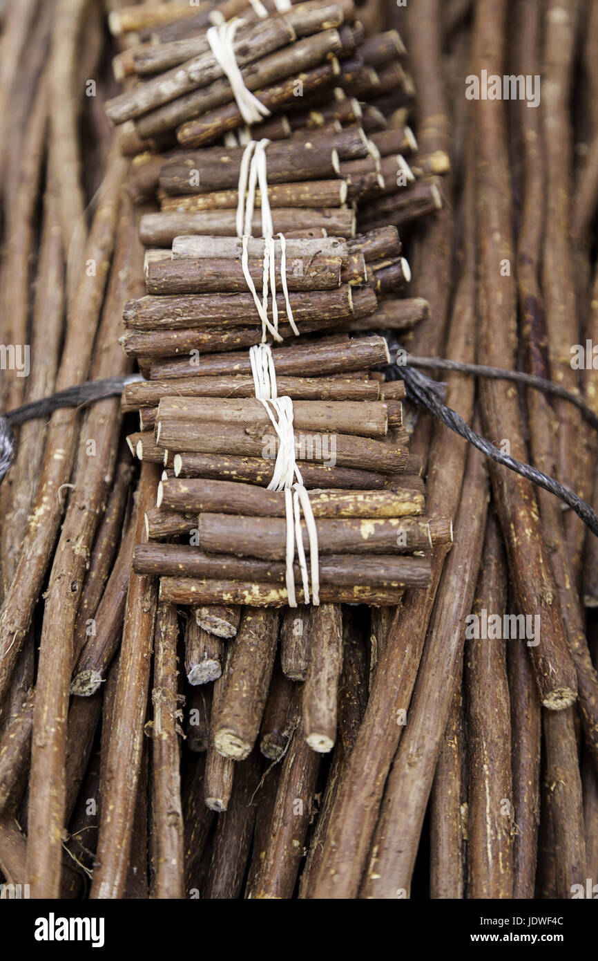 Licorice sticks, detail of liquorice-flavored sticks Stock Photo