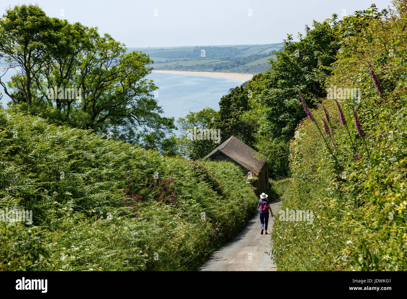 Walking towards Blackpool Sands, near Dartmouth, Devon - Stock Image
