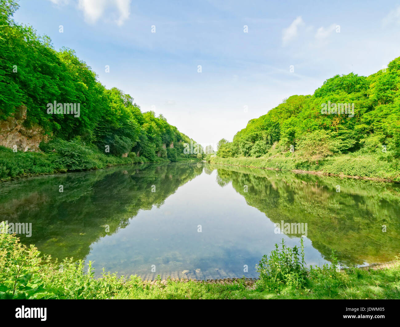 A long, narrow lake fringed by trees on a summers morning - Stock Image