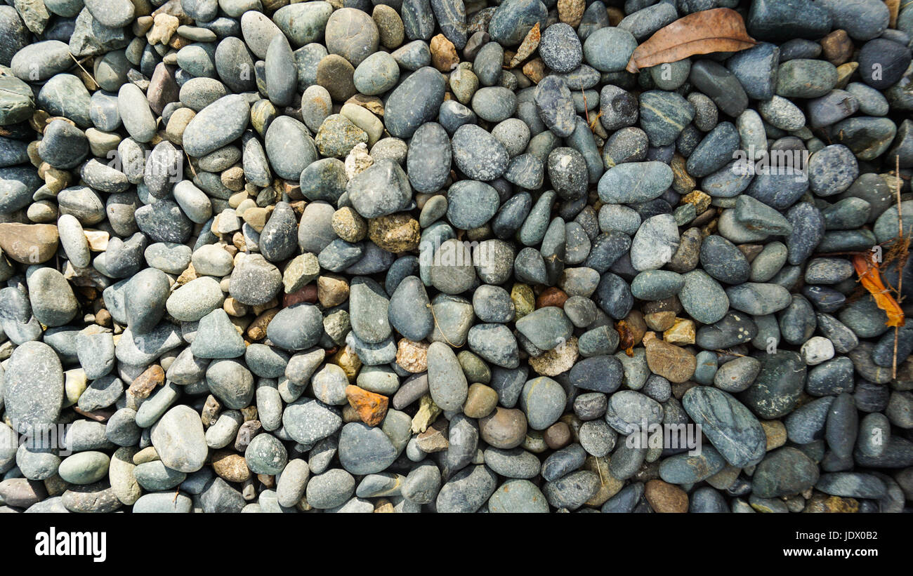 Lots of grey, black, white pebble stone texture background with dried orange leaves - Stock Image