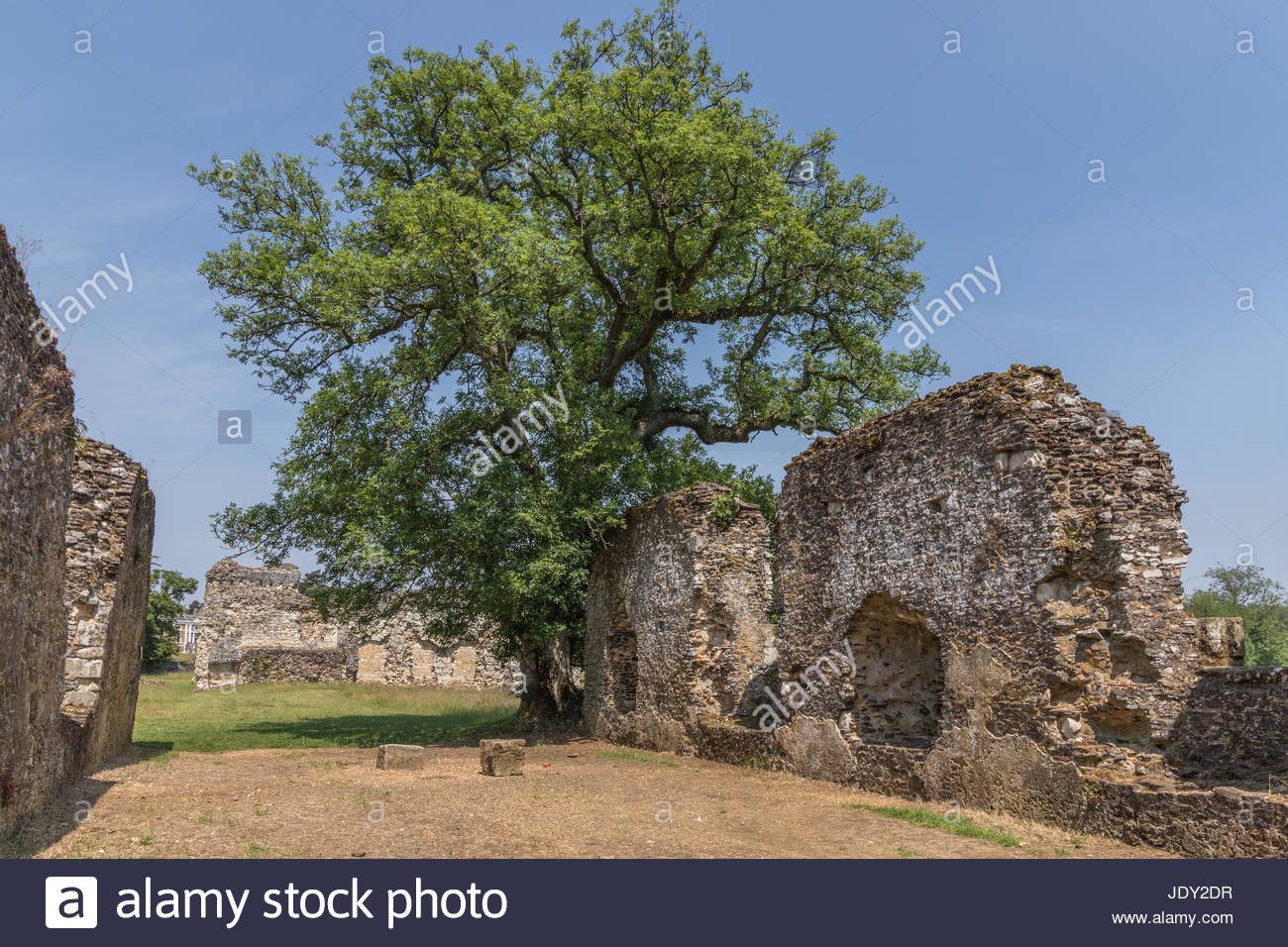 Waverley Abbey, the first Cistercian monastery in England founded in 1128 by William Gifford, Bishop of Winchester. - Stock Image
